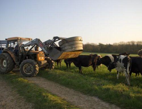 FISCALITÉ AGRICOLE : LES NOUVEAUTÉS EN 2019 :