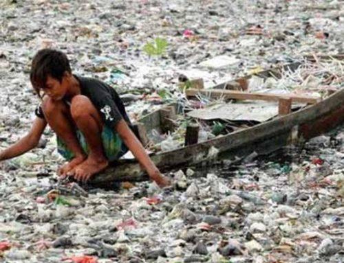 3 juillet 2020 : Journée mondiale sans sacs plastiques
