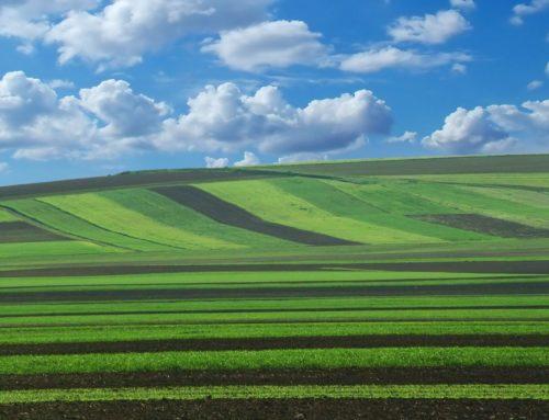 Depuis 2017 : une agriculture plus durable et rémunératrice