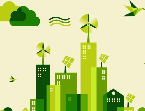 Transition écologique : Notre action depuis le début du quinquennat
